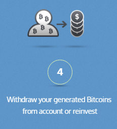 Withdraw or reinvest at Terabox
